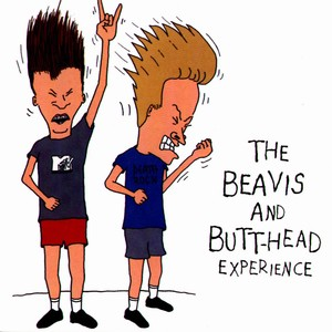 Beavis And Butt-Head Experience